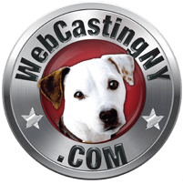 WebCasting Production Services NY